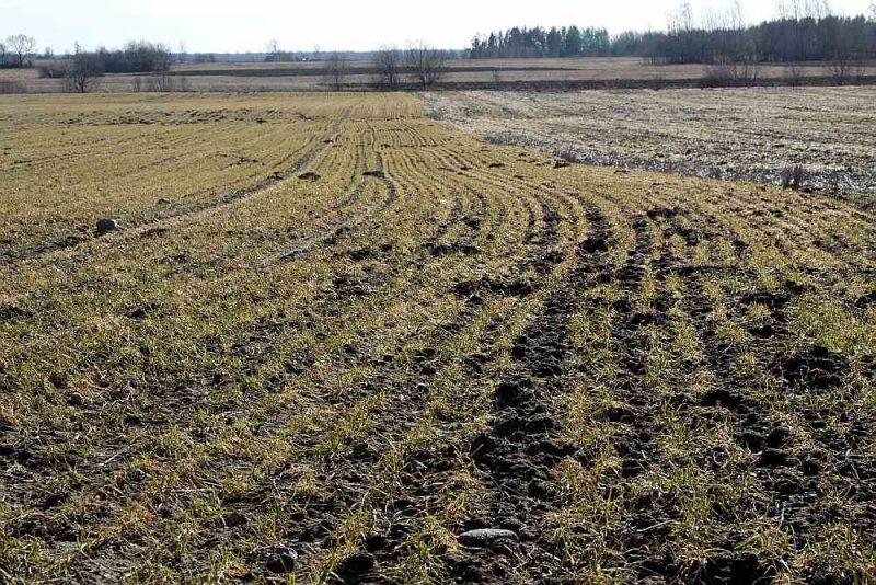 Visdārgāk zeme pērn maksājusi Zemgalē, kur darījumi notikuši cenu robežās no 7000 līdz 10 000 eiro par hektāru.