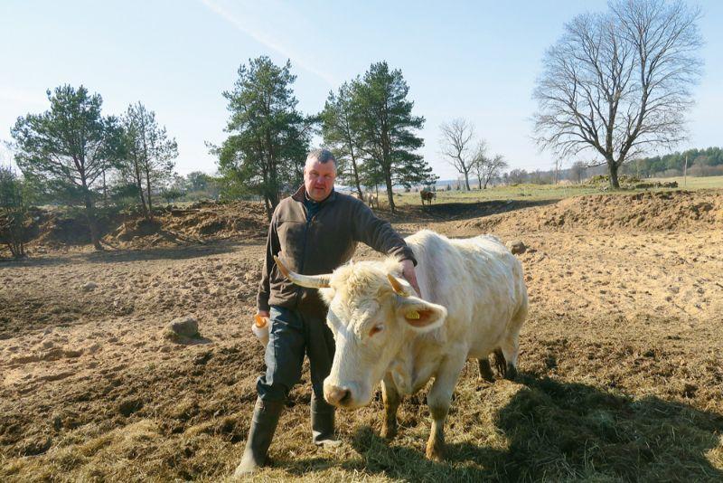 """""""Dreijmaču"""" saimnieks Raivis Mačtams ar visvecāko zīdītājgovi, kurai ganāmpulkā piešķirts pirmais numurs."""