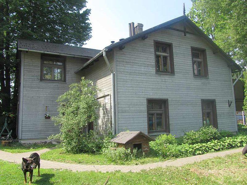 Glītajai koka mājai ar dekoratīvajām jumtgalēm dēļu apšuvums ir saimnieces iecerētajā vītolu lapu tonī.