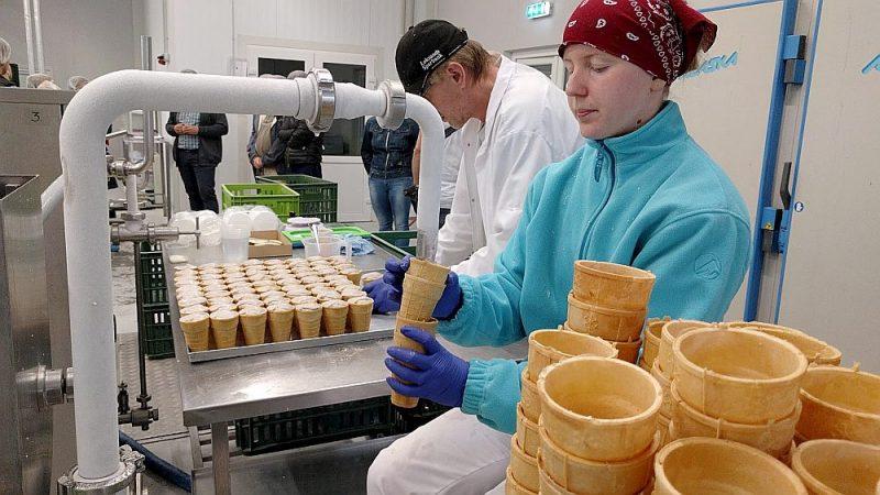 """Grasbergu ģimenes saimniecība """"Zilūži"""" saldējuma gatavošanā izmanto pašu saimniecībā ražoto pienu, un lielākoties tas ir roku darbs. """"Esam pilna cikla saimniecība. Tas nozīmē, ka varam radīt saldējumu no zāles, jo to izlaižam caur govi, iegūstam pienu, ko pārstrādājam saldējumā,"""" par saimniecību stāsta tās dibinātājs Jānis Grasbergs."""