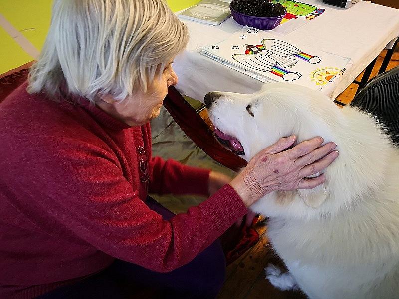 """Kanisterapijas suņi viesos pie senioriem Amatas novada """"Sērmūkšos""""."""