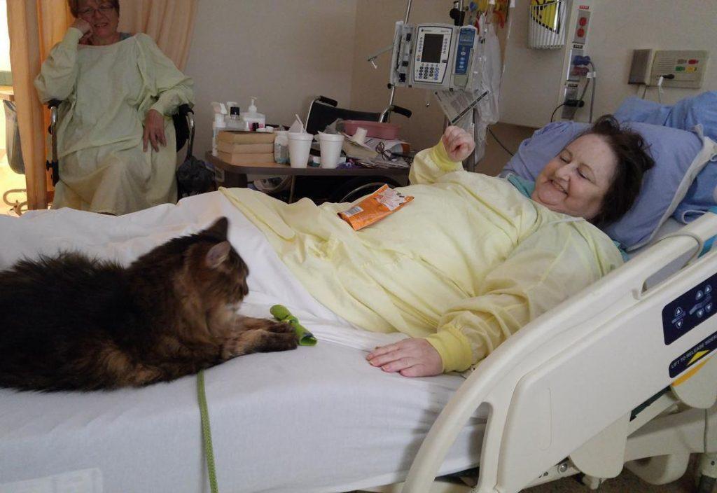 """Sadarbībā ar slimnīcas personālu un brīvprātīgajiem Dženkinsa izveidoja programmu """"Zachary's Paws for Healing"""", kas visiem slimnīcas pacientiem sniedz iespēju regulāri tikties ar saviem mājas mīluļiem."""