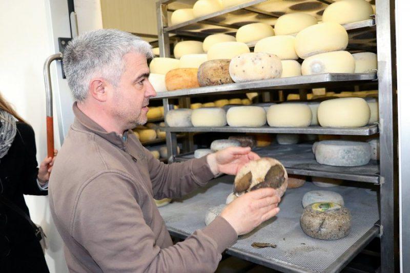Toskānas siera ražotnē