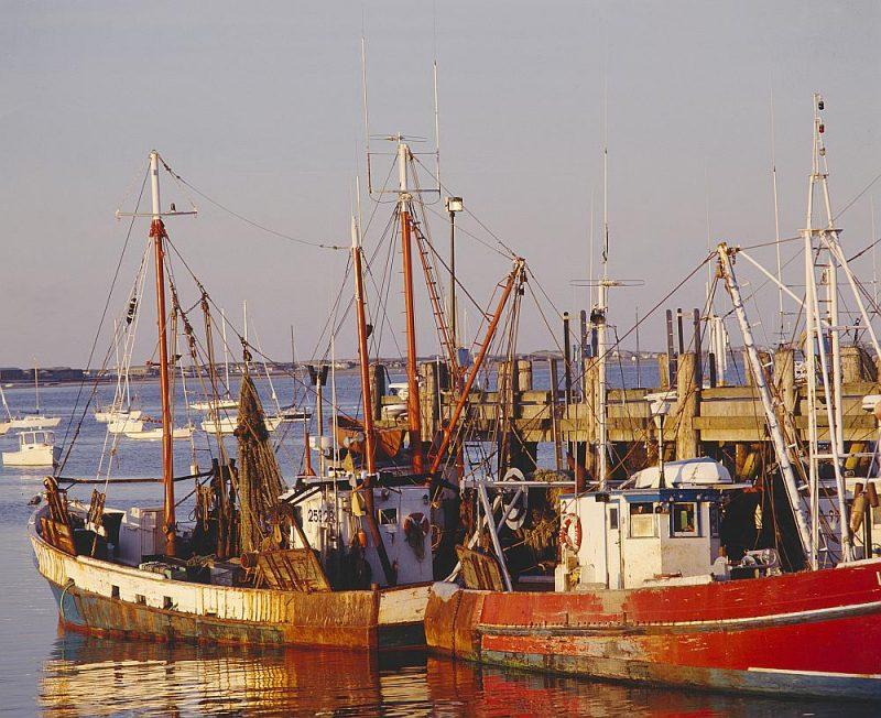 Tiem zvejas kuģu īpašniekiem un apkalpes locekļiem, kas uz kādu laiku pārtrauks mencu zveju Baltijas jūrā, būs pieejams valsts un Eiropas Savienības atbalsts pārtraukuma periodā.