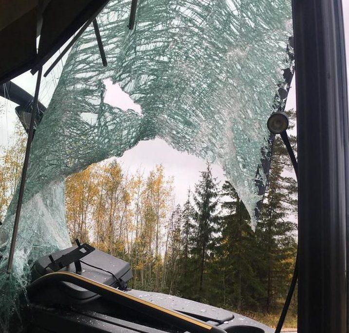 Vējstikls pēc automašīnas sadursmes ar meža dzīvnieku.