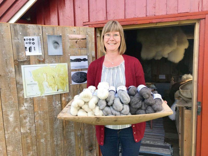 Eva Hēberga no aitu vilnas gatavo dziju un to pārdod.