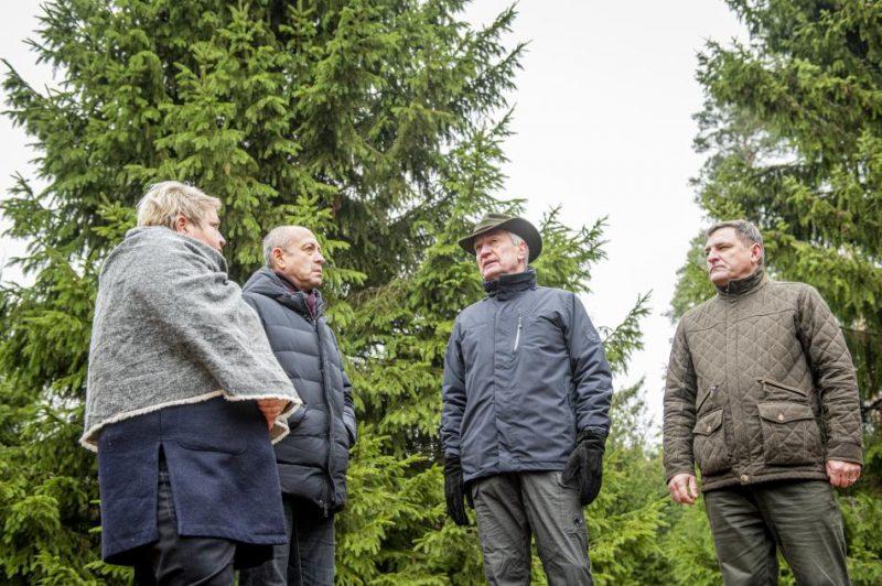 Izvēlētas Rīgas galvenās egles 2019. gada 21. novembrī