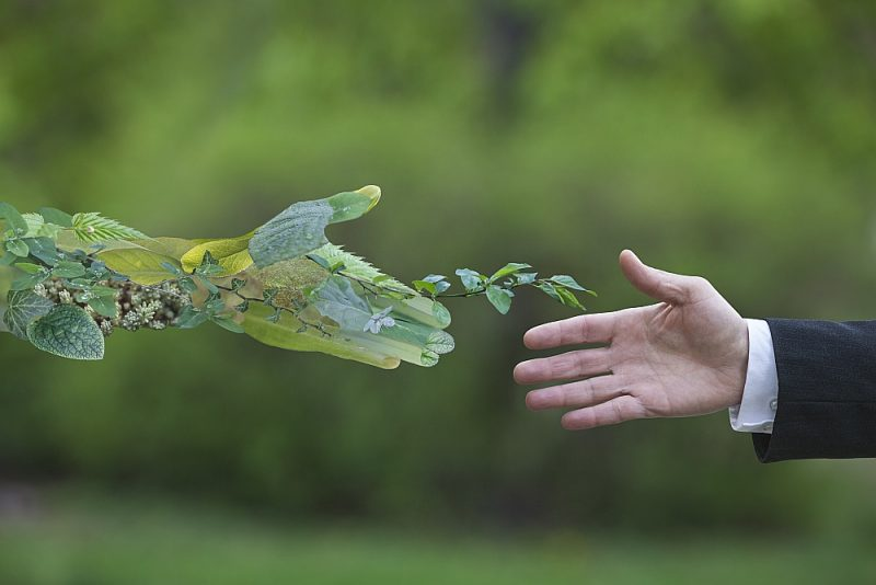 """Jau šobrīd nospraustie klimata mērķi prasīs 260 miljardus eiro papildus investīciju gadā, bet jaunie, vēl ambiciozākie mērķi, ko paredz """"Green deal"""" – ES zaļā vienošanās, kas tiek tulkota kā """"Zaļais kurss"""", maksās vēl dārgāk."""