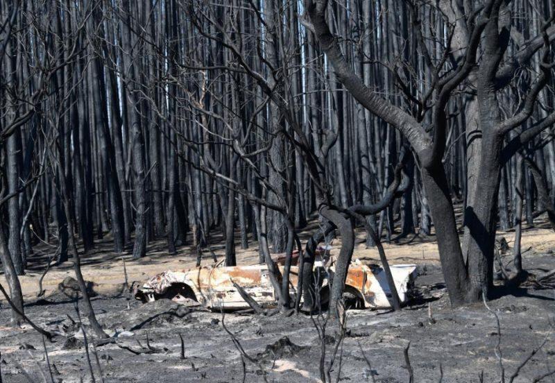 Savvaļas ugunsgrēki Austrālijā 2010. gada janvāra sākuma