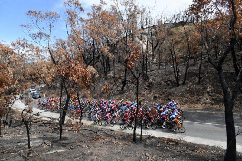 """""""Tour Down Under"""" posms Adelaides apkārtnē. Šosejas riteņbraukšanas daudzdienu sacensības Austrālijā notiek no 21. līdz 26. janvārim."""