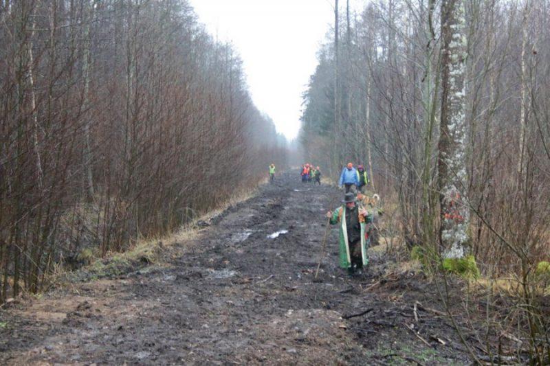 """Medeības beidzas. Valsts meža dienesta darbinieki pagaida, kamēr no masta """"noņemas"""" mednieki un no meža iznāk mednieki."""