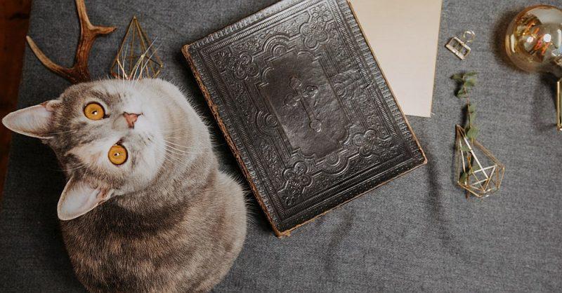 Bīriņu dzimtas svarīgākā grāmata un lielākais dārgums – 1898. gadā izdotā Bībele latviešu valodā, kas pārmantota no paaudzes paaudzē.