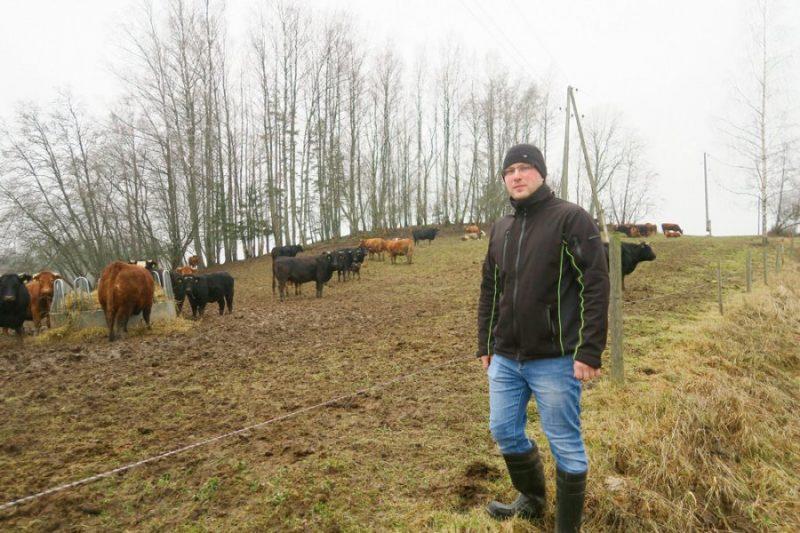 Dmitrijs Volkovs: Nereti izveidojies nepareizs priekšstats, ka darboties gaļas lopkopībā būs daudz vieglāk nekā piena lopkopībā. Tā nav!