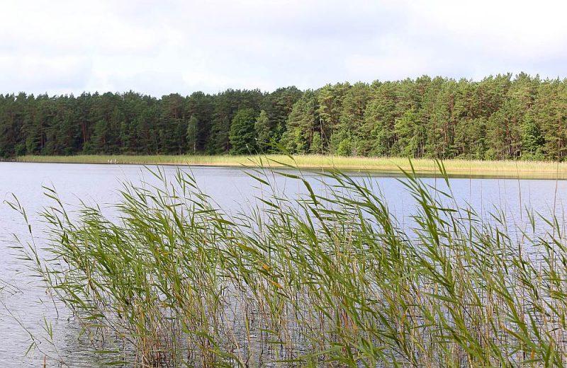 Latvijas projekts skar ūdens kvalitātes uzlabošanas pasākumus.