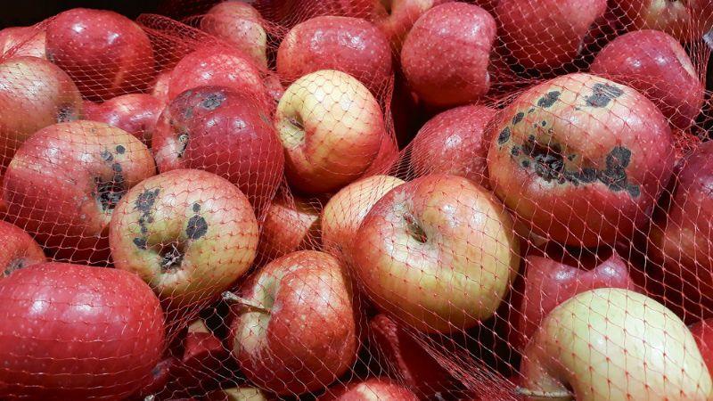 Latvijas āboli šajā ziemā lielveikalos.