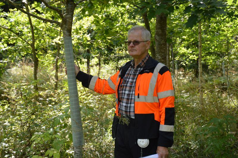 """Aivars Vanags: Apsaimniekojot mežu, jāizmanto citu cilvēku pieredze – kāda, kas jau kaut ko mežā ir izdarījis. Un, protams, arī zinātnieku pētījumus."""""""