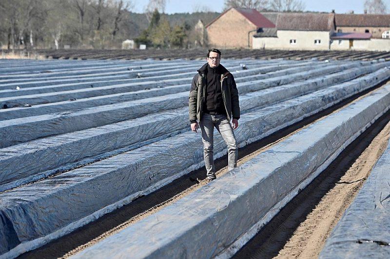 Vācu fermerim Tomasam Siringam Bēlicā, Brandenburgas zemē, noteiktā karantīna liedz iespēja sparģeļu novākšanai saņemt sezonas viesstrādniekus no Polijas un Rumānijas.