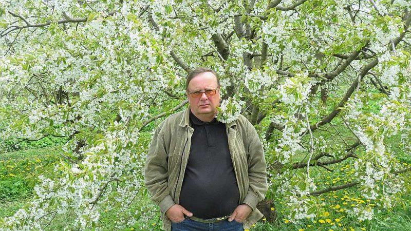 """""""Kāds būs salnu kaitējums, varēs redzēt pēc pāris nedēļām. Ziedi jau nav nosaluši, bet dažiem drīksnas ir brūnas, un tas nozīmē, ka augļi neaizmetīsies,"""" saka Latvijas lielāko ābeļdārzu saimnieks, Viesītes novada kooperatīvās sabiedrības """"Poceri"""" valdes priekšsēdētājs Modris Lāčplēsis."""