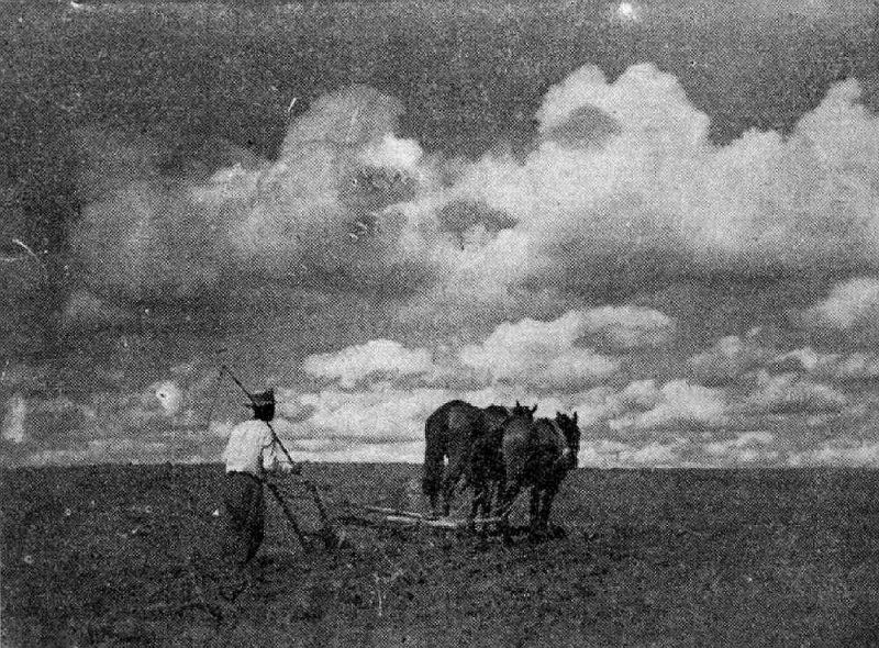 Pēc Pirmā pasaules kara Latvija bija kļuvusi par izteikti agrāru zemi.