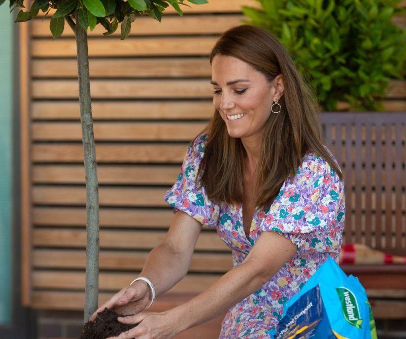 Keita Midltone apciemo mazos slimniekus un uzdāvina katram bērniņam savu augu.