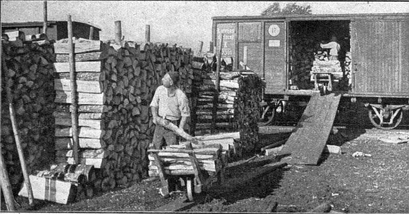Malkas izkraušana Rīgā 20. gs. 30. gados.