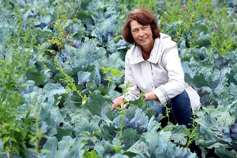 """Agronome un dārzkopības eksperte Mārīte Gailīte uzskata, ka ideja padarīt teju visu lauksaimniecību par bioloģisko nav reāla: """"EK Izvirzītie mērķi ir pretrunā ar precīzās lauksaimniecības attīstību, kas arī ir viens no šīs stratēģijas mērķiem""""."""