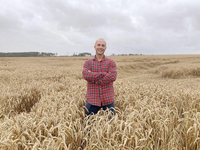 """Pēc krusas nodarītās skādes rapšiem """"Lazdiņu"""" saimnieka un SIA """"Latvijas grauds"""" valdes priekšsēdētāja Elvja Lazdiņa cerība ir labā kviešu raža, kuru tūdaļ saimniecībā sāks kult."""