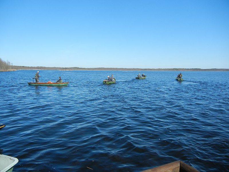 Spiningošanas sacensības sāksies 29. augustā Lielauces ezera laivu bāzē, Lielauces ezers makšķerniekiem devis labus lomus.