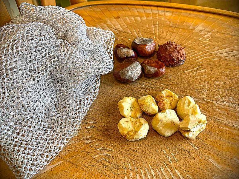 Veļas mazgāšanas līdzekļus lieliski aizvieto kastaņi, kurus nomizotus liek mazgāšanai paredzētajā mazajā auduma maisiņā.