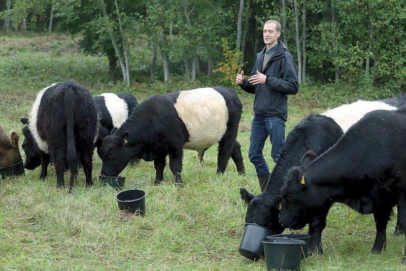 """""""Šobrīd liels palīgs man ir Galovejas šķirnes liellopi, kas iesaistās dabisko pļavu atjaunošanā un uzturēšanā,"""" stāsta ZS """"Drubazas"""" saimnieks Ģirts Dzērve."""