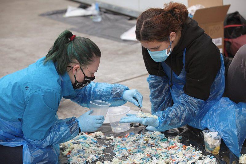 62,4% aptaujā atzinušies, ka nederīgās zāles izsviež atkritumos, tikai nieka 10,1% tās nesa uz aptieku.
