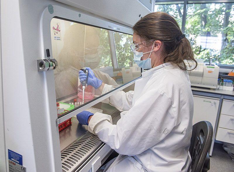 Koronavīrusa vakcīnas izstrāde Oksfordas universitātes  laboratorijā.
