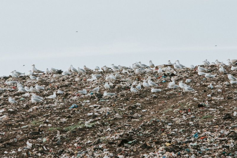 """Uzņēmums """"ZAAO"""" ar partneriem piedāvā radīt pārstrādes idejas hakatonā, ko rīkos šovasar 21.–22. augustā. Tiks piedāvāti trīs atkritumu veidi: riepas, stikla šķiedras atkritumi un no atkritumiem iegūtais kurināmais, lai radītu idejas un inovācijas to izpētes un pārstrādes veicināšanai."""